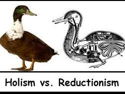 A level Psychology- Reductionism vs Holism 16 Mark Essay!