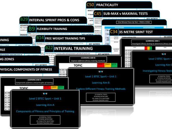 (L3) BTEC Sport Unit 1 - Skeletal System Flashcard Pack