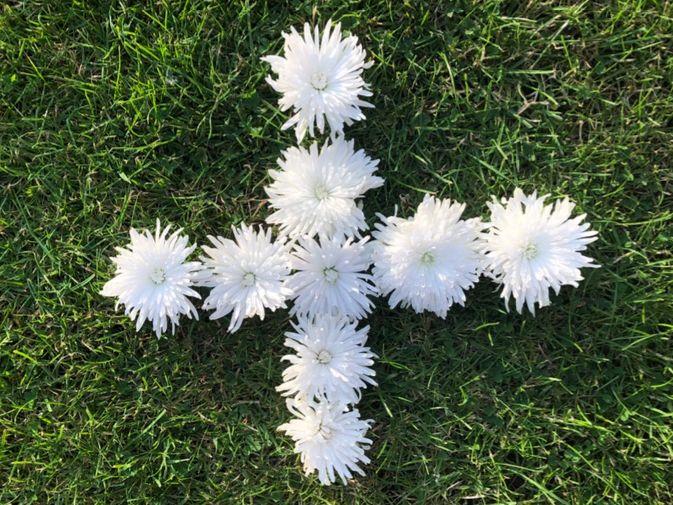 Floral Maths Symbols