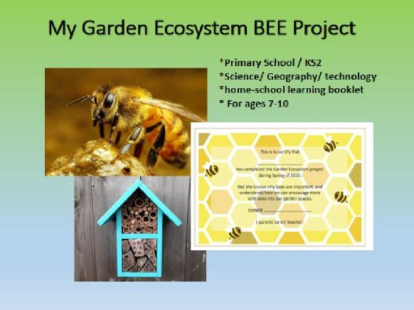 home learning; Garden Ecosystem BEE Project