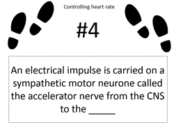 The autonomic control of HEART RATE