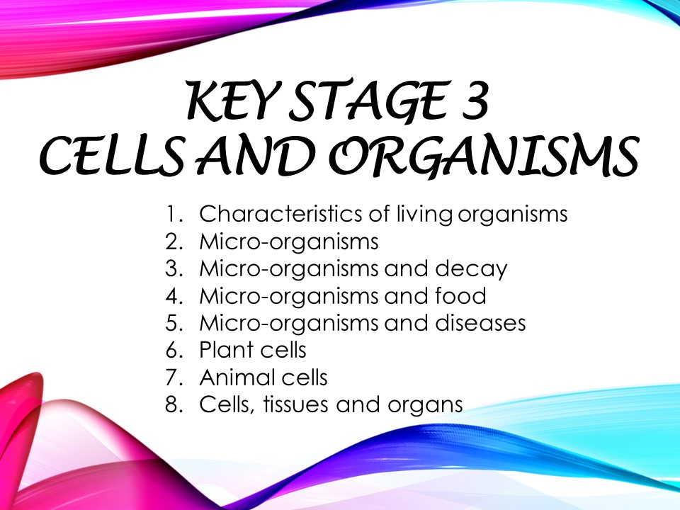 KS3_Secondary 1 checkpoint_worksheet and revision(with answer script): Cells and organisms