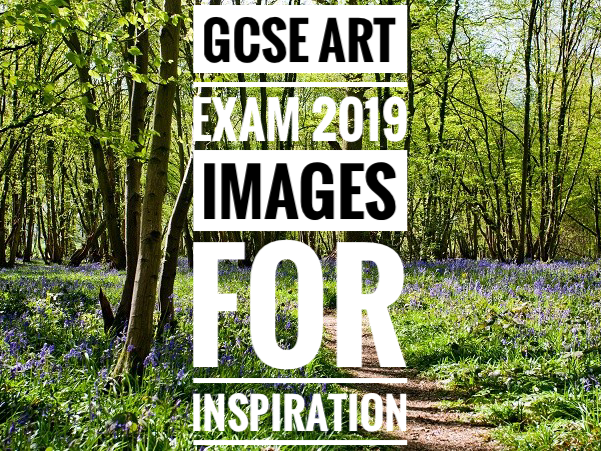 GCSE Art Exam 2019. Woodland Surroundings Images for Inspiration