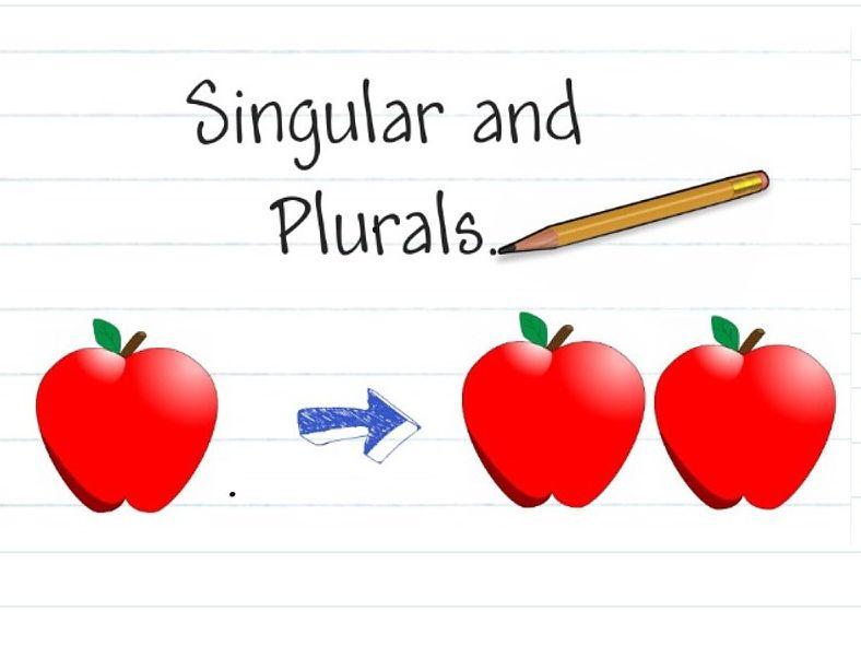 NOUNS - Singular & Plural