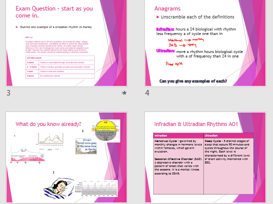 A Level AQA Psychology - Year 2  Bio Psych - Biological Rhythms Lessons