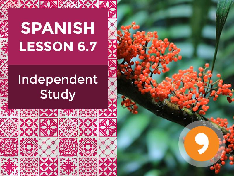 Spanish Lesson 6.7: La Naturaleza - Independent Study