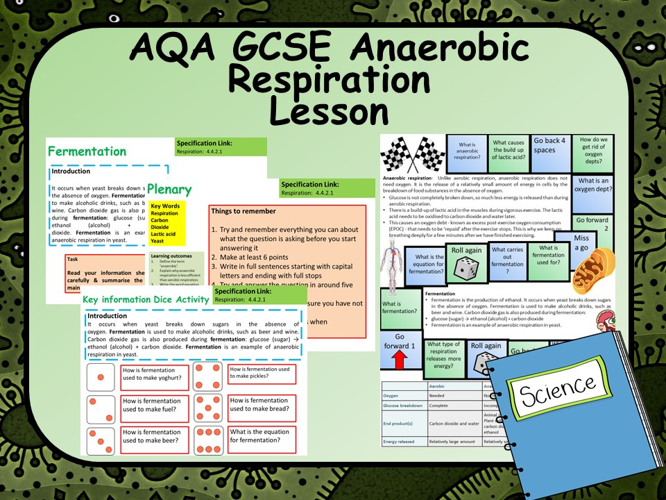 AQA KS4 GCSE Biology Anaerobic Respiration Lesson
