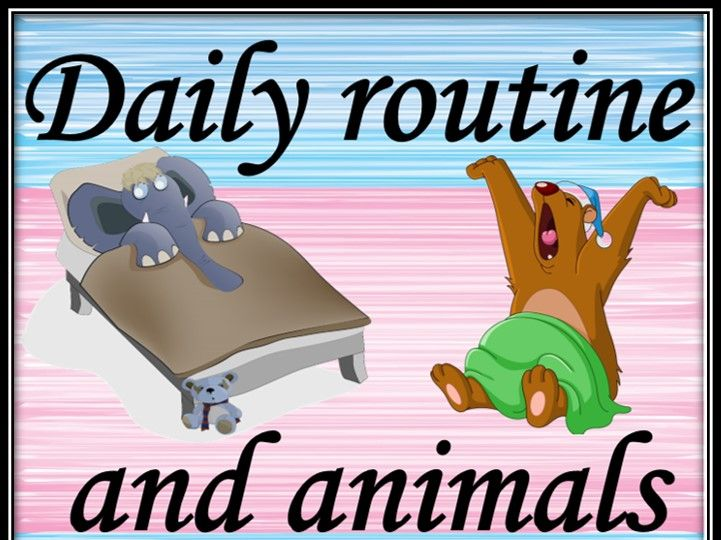 Daily routine and animals. Matching game.