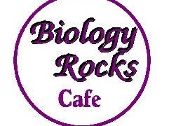 Biology Rocks bulletin board