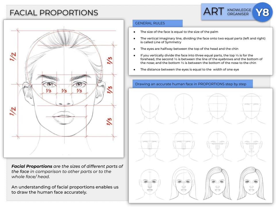 Proportions in the Human Face, Knowledge Organiser