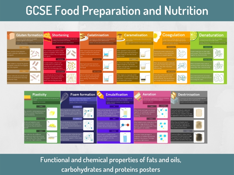 Functional and chemical properties of food posters.