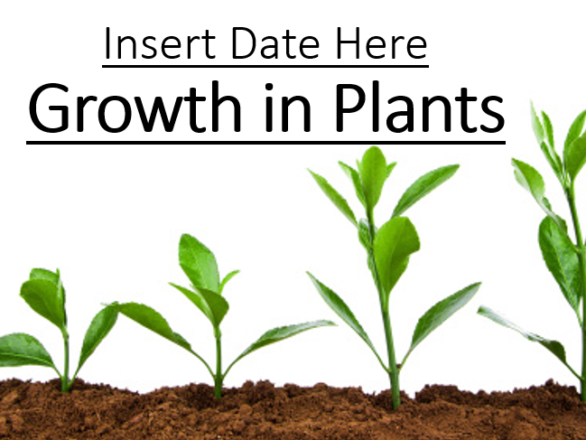CB2c - Growth in Plants