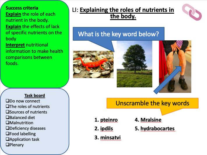 KS3 Nutrients (Digestion)