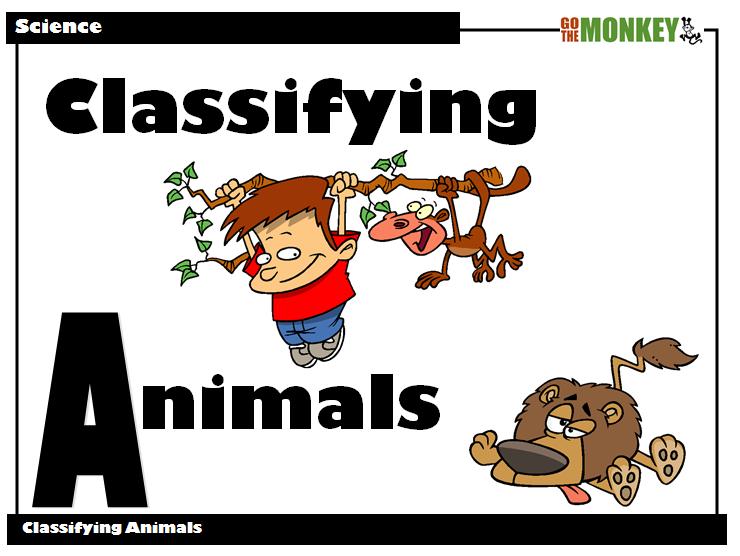 Classifying Animals PowerPoint Presentation