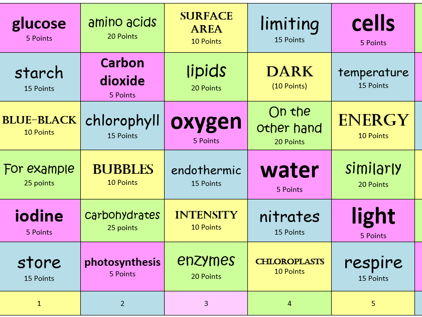 Photosynthesis consolidation or revision activity  - Foundation