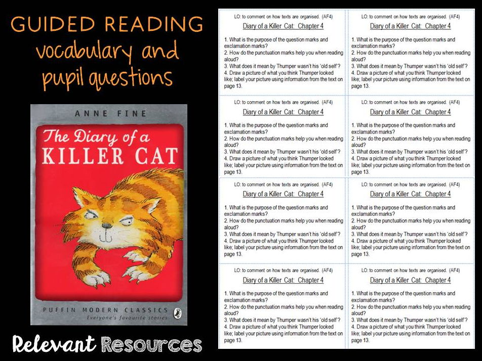 Guided Reading: Diary of a Killer Cat