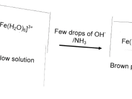 Reactions of Transition metals