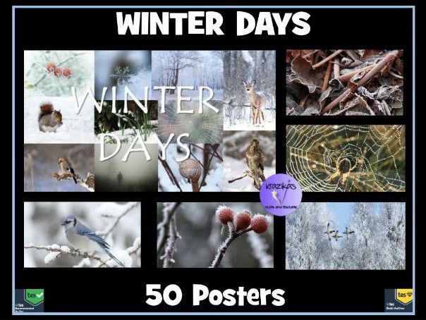 Winter Days: Set of 50 Posters