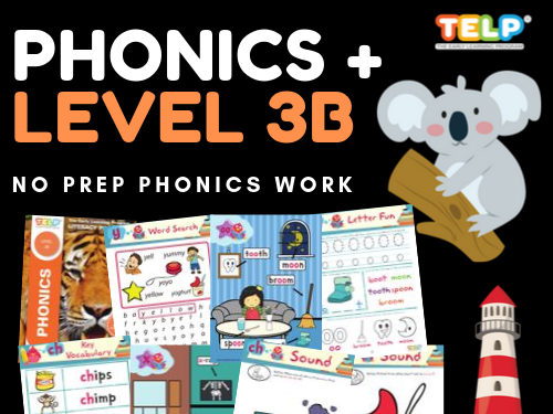 Phonics 3B - Introducing Letter Sounds & Blending -OO, Y, X, CH, SH, TH, TH, OU
