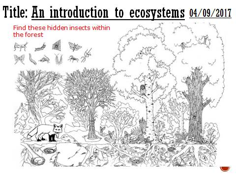 Intro to ecosystems - complete lesson (A2)