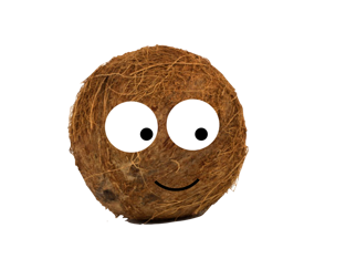 The Shy Coconut - Sequencing Activities
