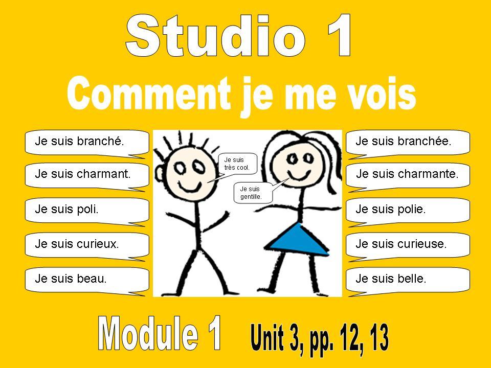 Studio 1, Module 1: Unit 3, Comment je me vois