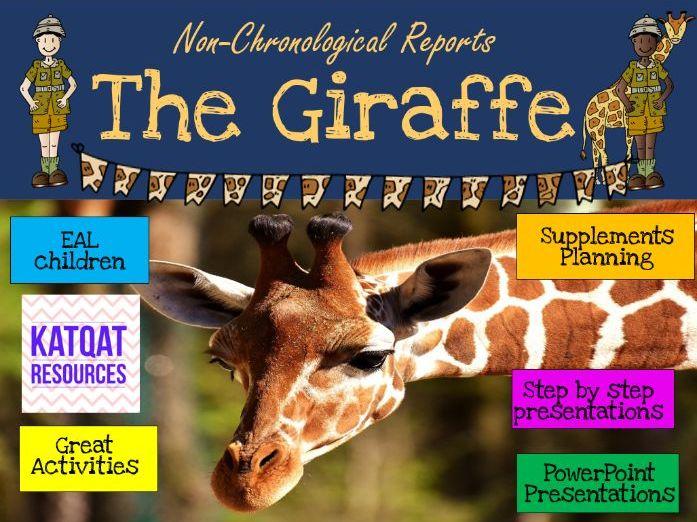 The Giraffe - Non-chronological Reports