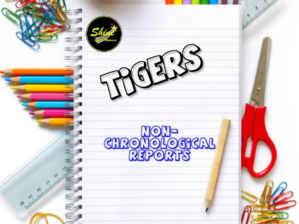 Non-Chronological Report Writing on Tigers - Years 3-5