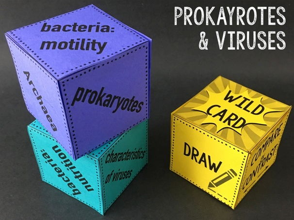 Prokaryotes and Viruses Review Qubes
