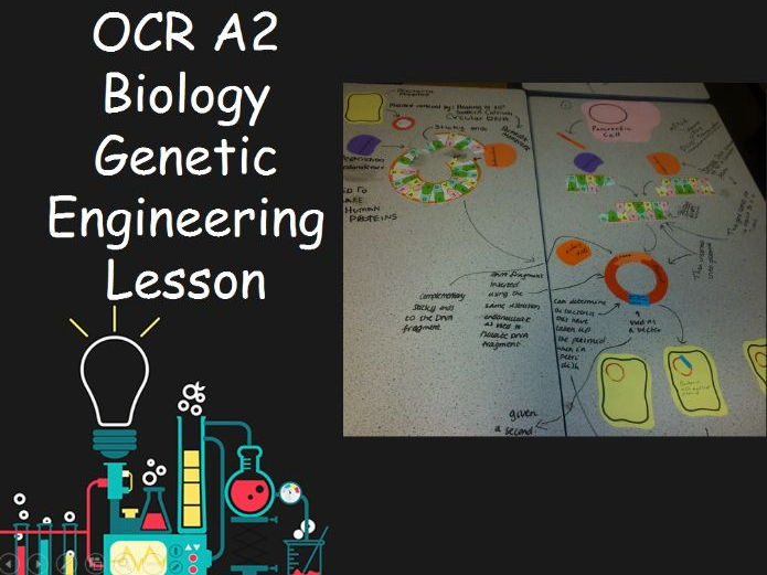 New OCR A2 Biology Genetic Engineering Lesson