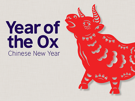 Year of the Ox Education Pack - Chinese New Year 2021 (Home Learning)