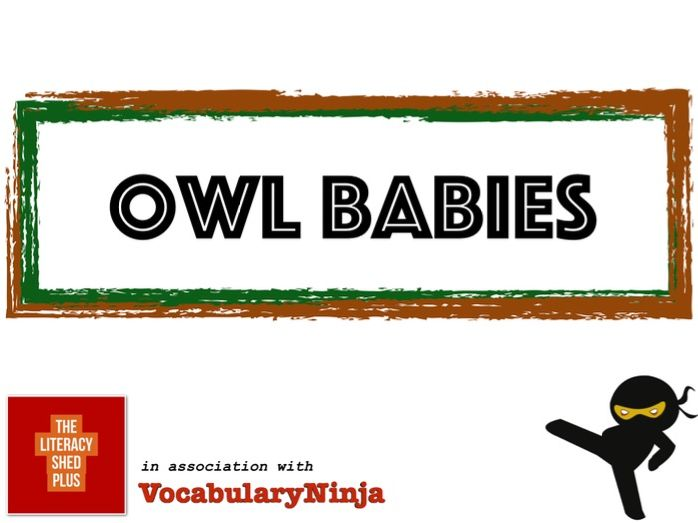 Owl Babies Vocabulary Pack