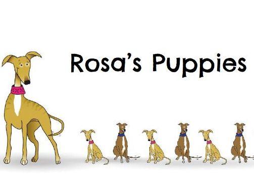Rosa's Puppies