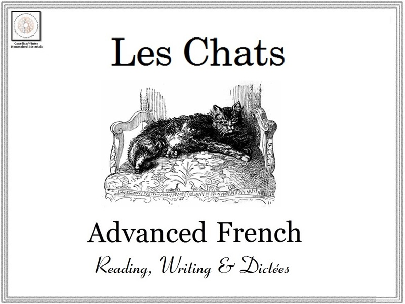 Advanced French Reading, Writing & Dictées : Les Chats