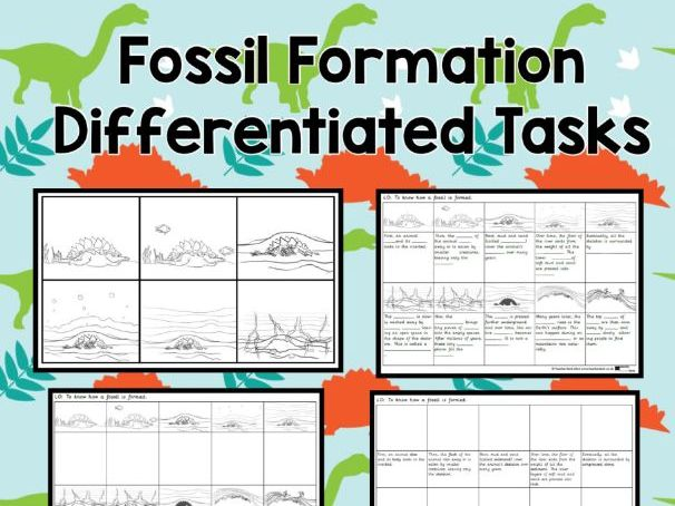 Fossil Formation Differentiated Tasks