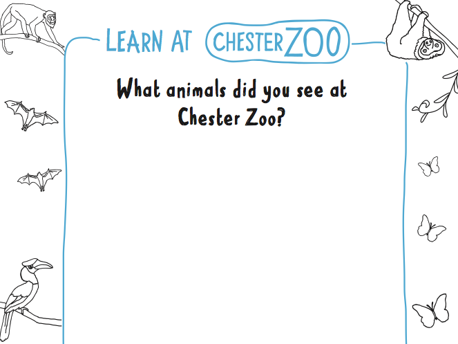 Learn at Chester Zoo - What animals did you see at Chester Zoo?