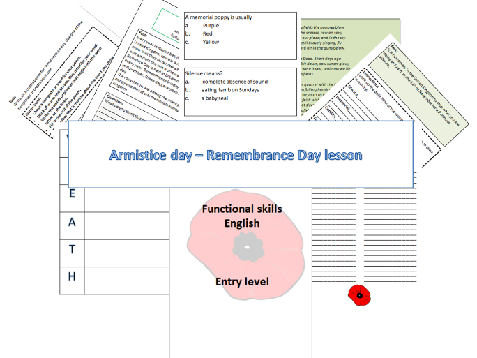 Remembrance Day/Armistice Day lesson