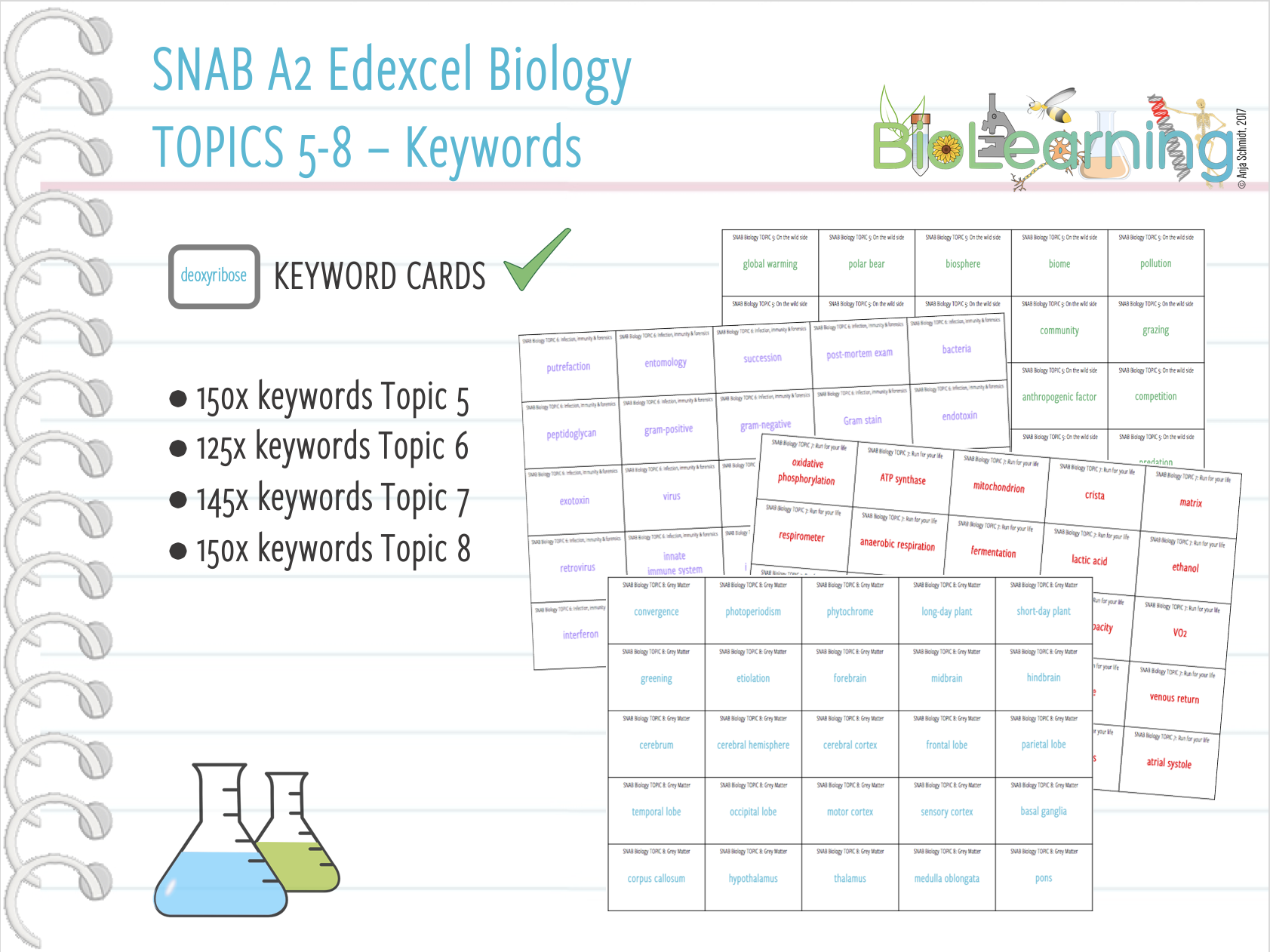 SNAB A2 Biology:  Keywords for Topics 5-8