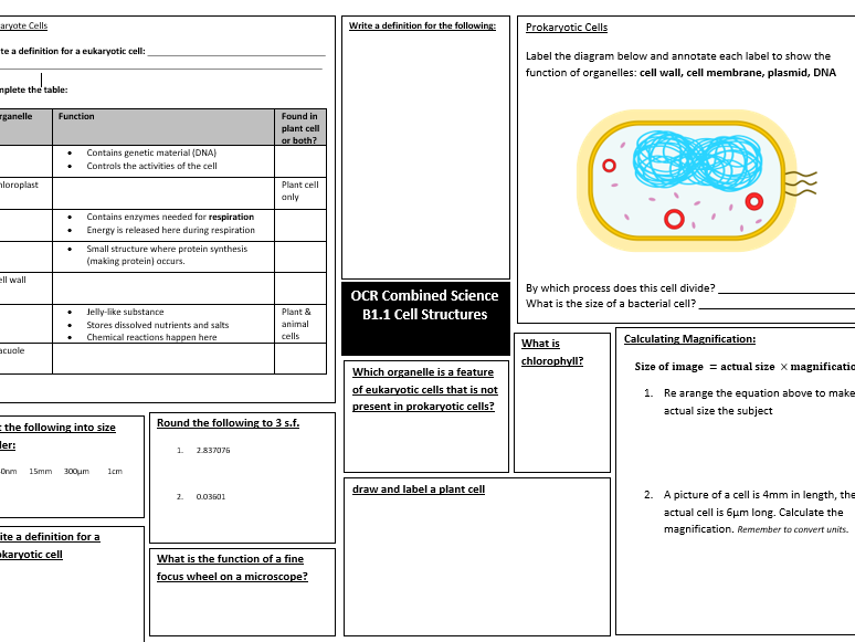 OCR Combined Science Biology B1.1 Cell Structures revision mat