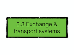 AQA 3.3 Exchange and Transport Systems - AS - Topic Revision - Keynote