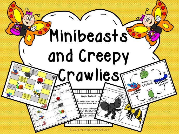 Minibeasts and Creepy Crawlies Investigation and Activity Pack