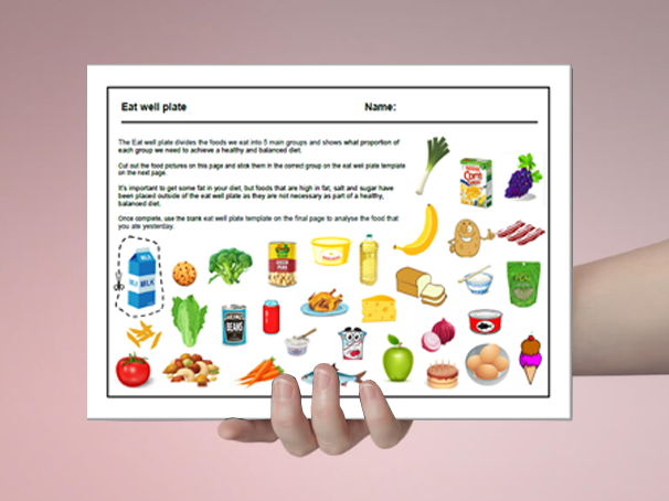 Food cover work / cover lesson - Eat well plate - 1hr activity