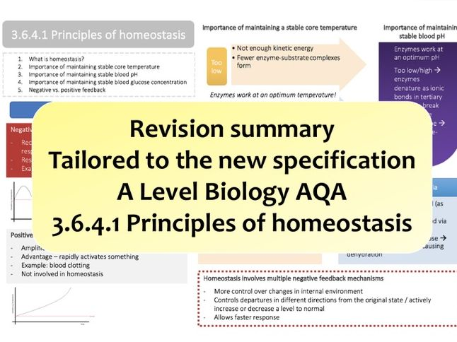 3.6.4.1 Principles of homeostasis   NEW A Level Biology colourful revision summary   AQA