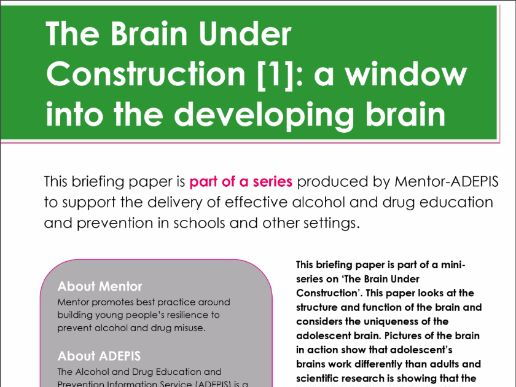 The Brain Under Construction – A window into the developing brain