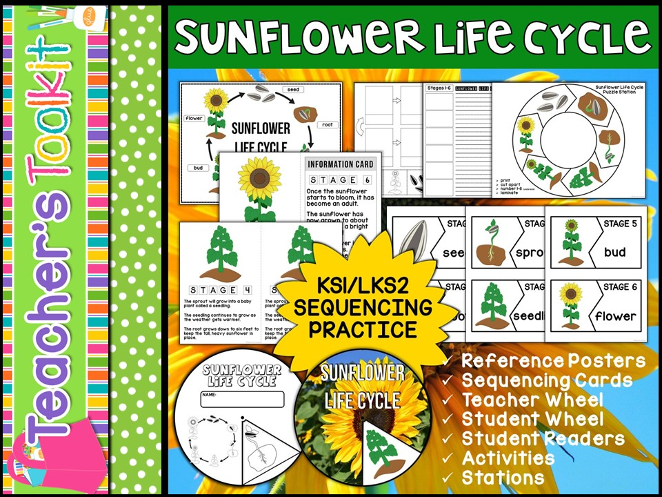 Sunflower Life Cycle Mini Unit - Sequencing Practice