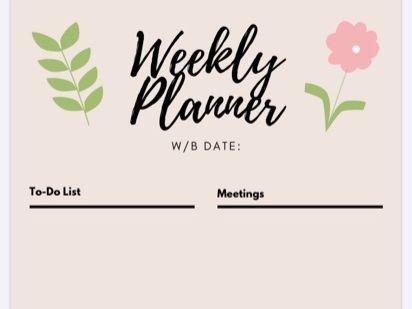 The Organised Teacher Planner