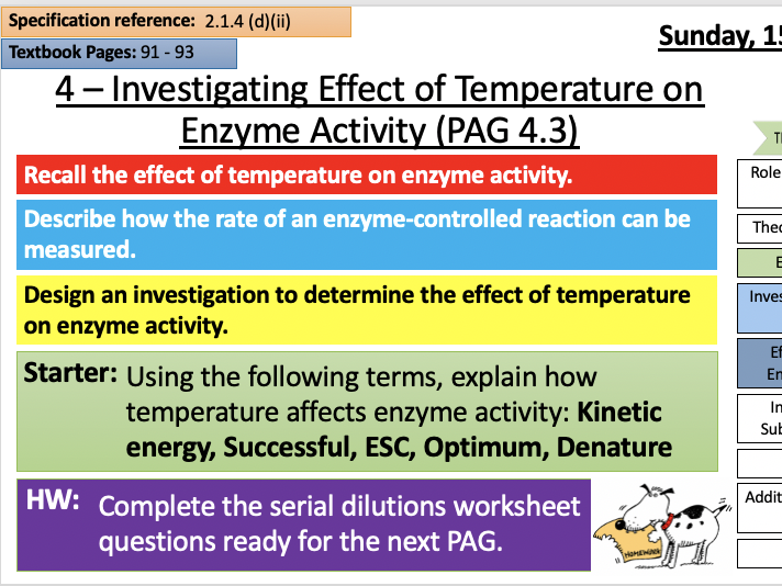 PAG 4  Rates of Enzyme Controlled Reactions - Temp