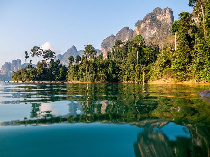 Rainforest Deforestation Case Study Thailand