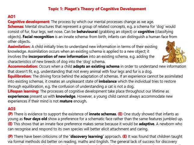 A2 Cognitive Development (Psychology)