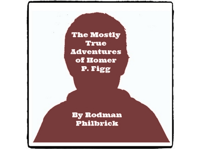 The mostly true adventures of homer p figg reed novel for Homer p figg